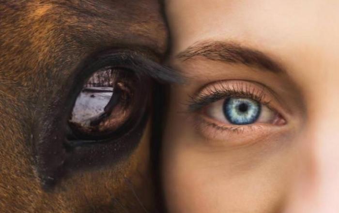 come-cambia-il-colore-degli-occhi