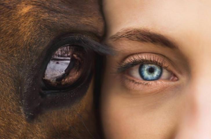 Come cambia il colore degli occhi
